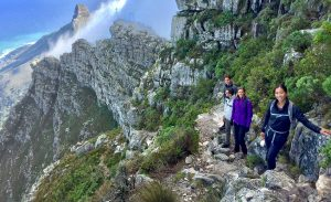 India Venster Table Mountain