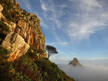 Lion's Head poking through low cloud